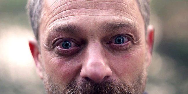 Netflix dio a conocer el tráiler de la serie polaca The Woods